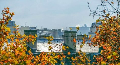 20101110-_mg_0202-edit_Paris Roofs_edit