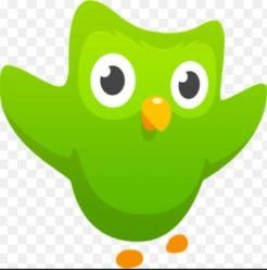 Duolingo Free Language Learning